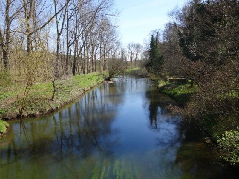 river_mar_2017_DSC01875