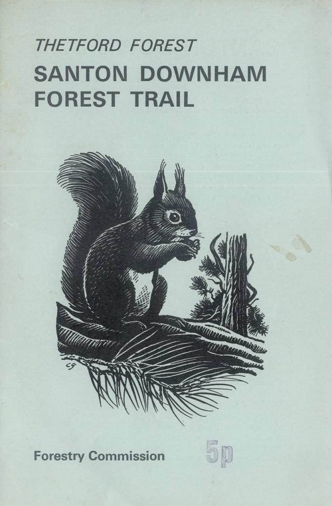 ForestTrail1