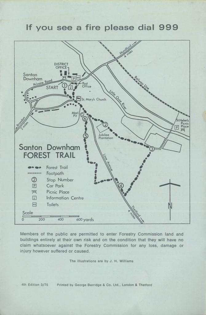 ForestTrail2